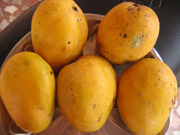 fresh fruits photos-Mango