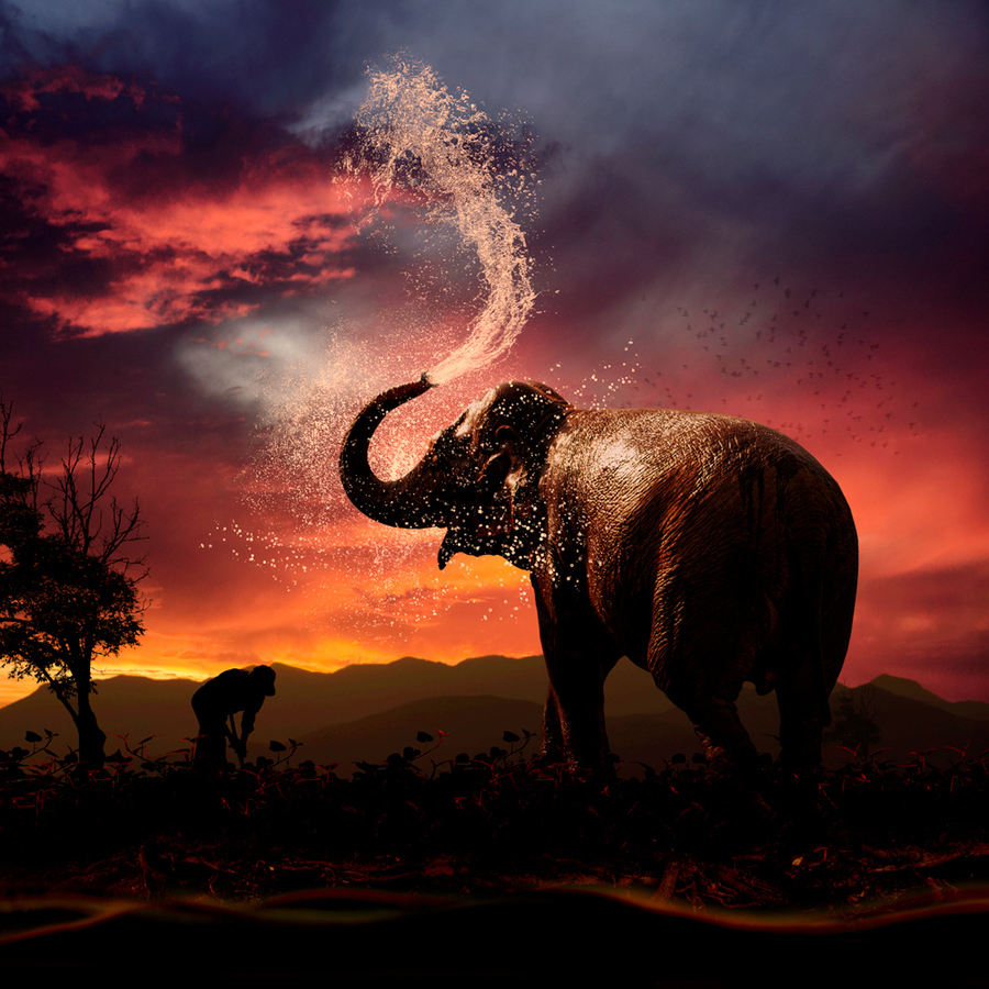 Cooling down by Caras Ionut