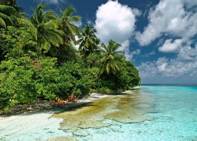 Fihalhohi Island - South Male (Kaafu) Atoll - Maldives 2009 by Patrick Jaussi