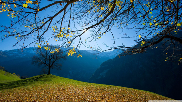 autumn-schachental-switzerland