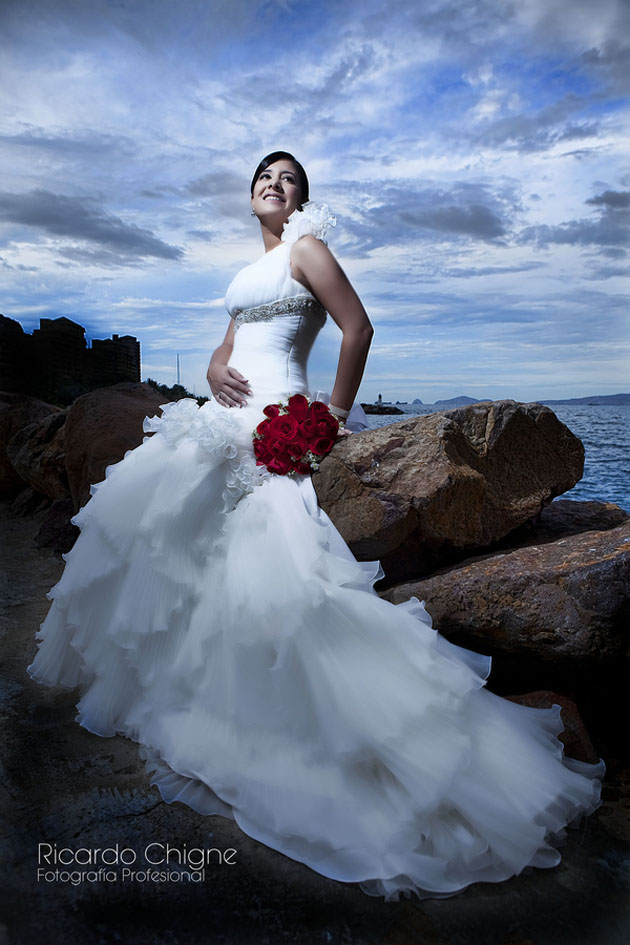 beautiful collections of brides photo (30)