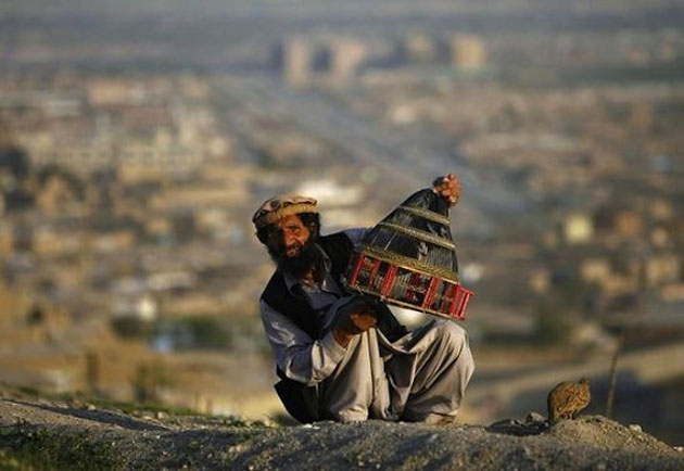 Afghan cleans a cage for his bird in Kabul