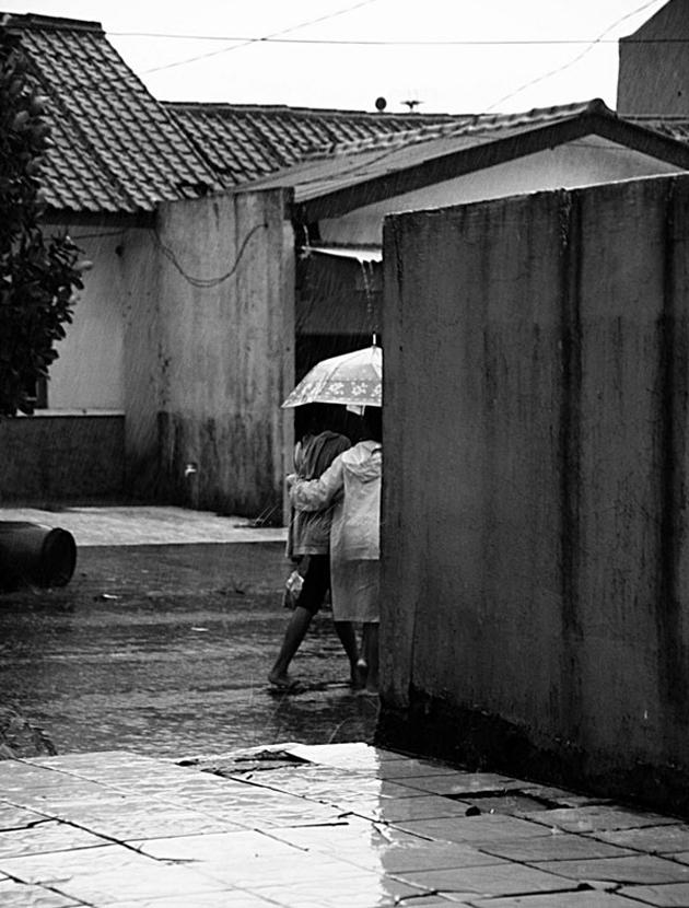 Especially for Rain Lovers (12)