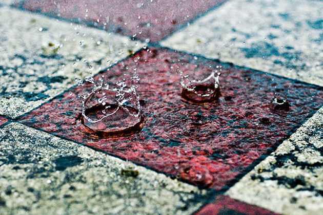 Especially for Rain Lovers (3)