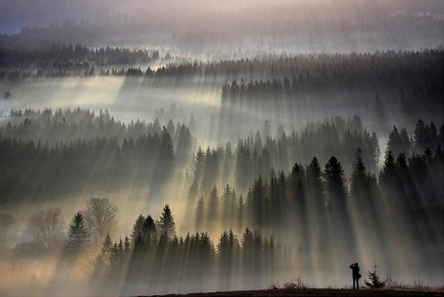 Mind blowing morning photography (25)