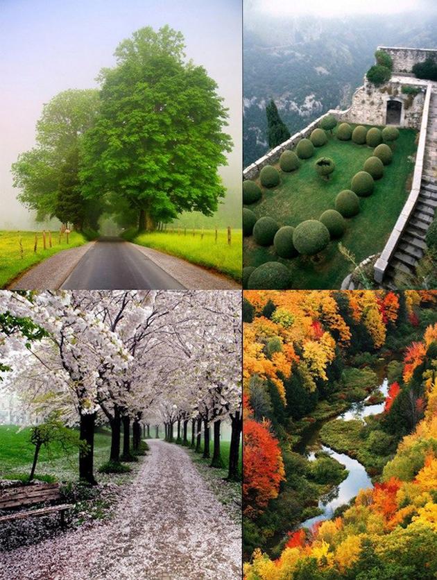 beautiful nature photos (10)