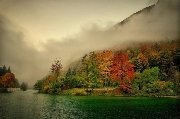 beautiful nature photos (7)