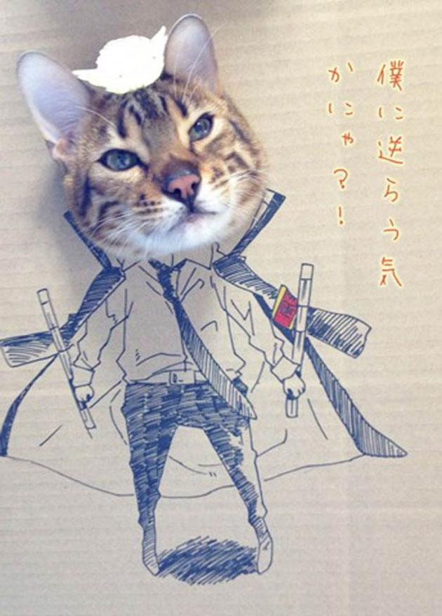 funny cardboard kitty (13)
