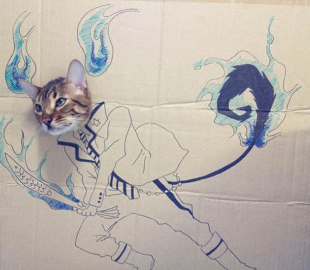 funny cardboard kitty (14)