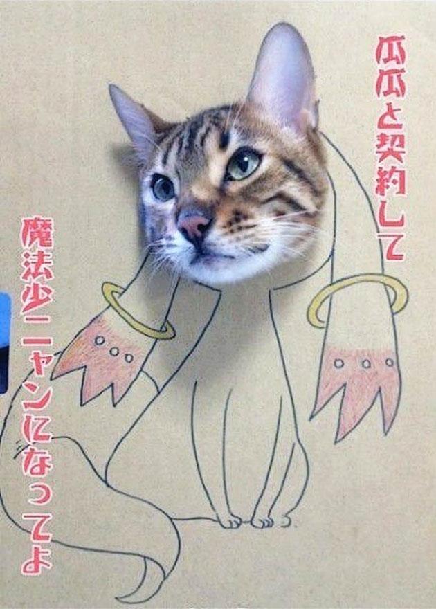 funny cardboard kitty (15)