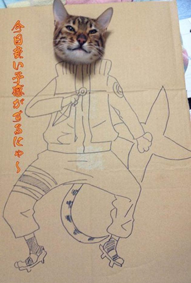 funny cardboard kitty (5)