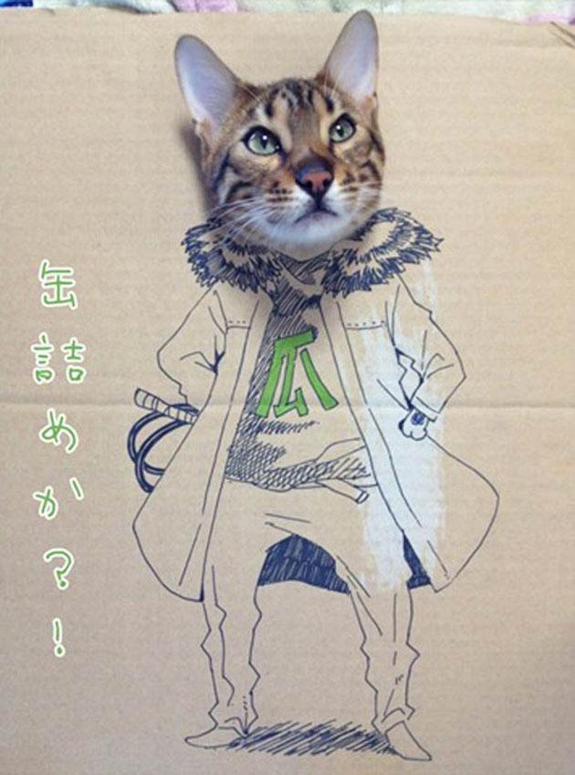 funny cardboard kitty (6)