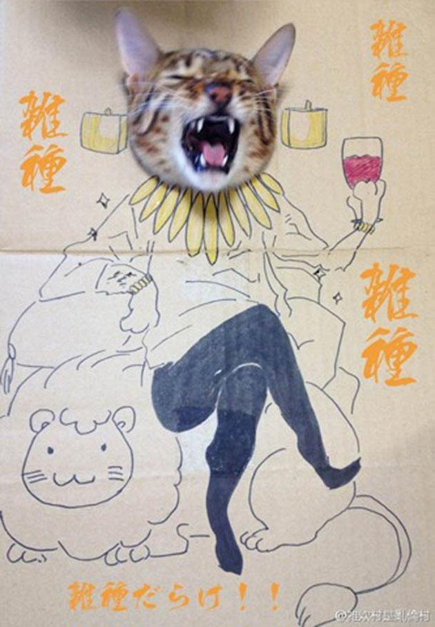 funny cardboard kitty (7)