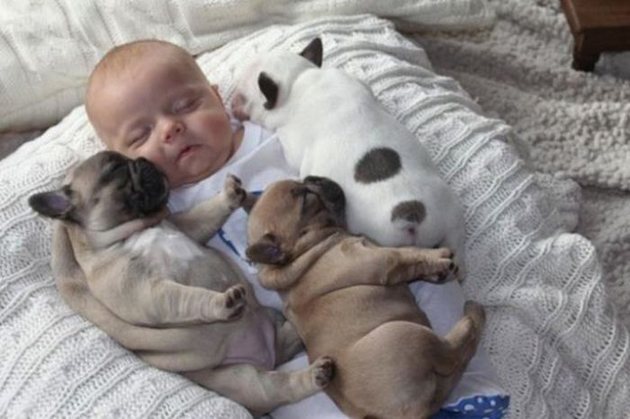 Cute Babies with Cute Puppies (2)