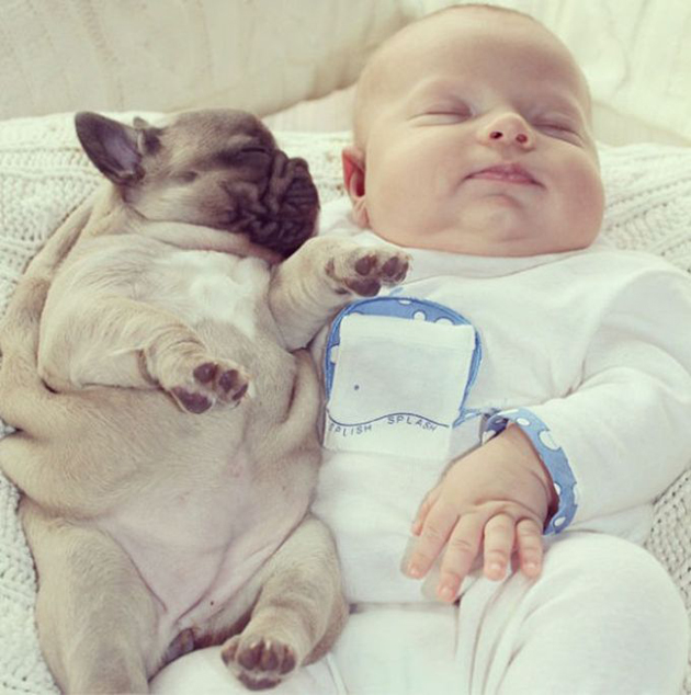 Cute Babies with Cute Puppies (3)