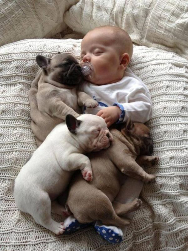 Cute Babies with Cute Puppies (8)
