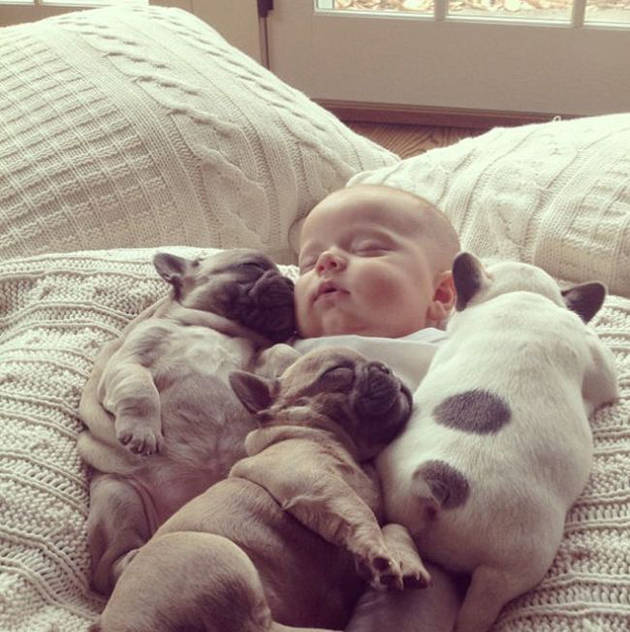 Cute Babies with Cute Puppies (9)