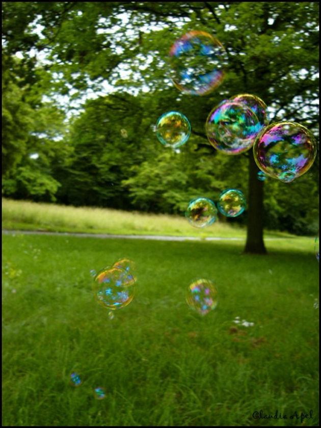 Beautiful Bubble Blowing (6)