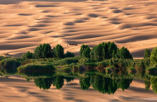 amazing & Beautiful Photos of National Geographic Photo Contest 2010 (2)