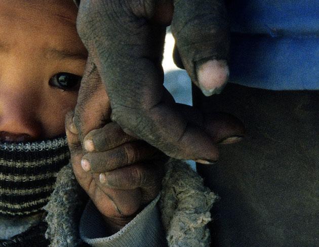 amazing & Beautiful Photos of National Geographic Photo Contest 2010 (31)