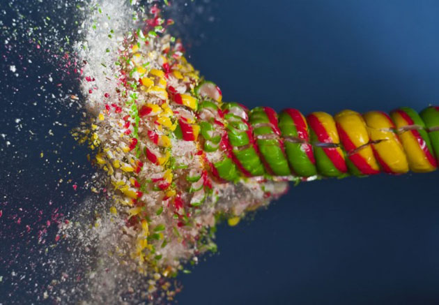 mesmerizing high speed photography (12)