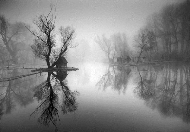 Best Nature Photographs by Adam Dobrovits (16)