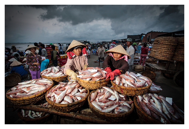 Fresh fish for market by Peter Pham
