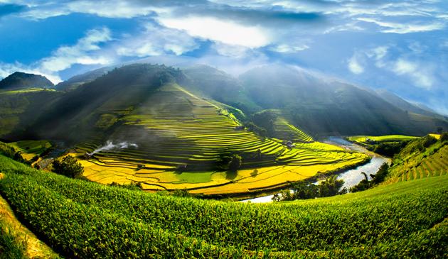 Golden Season by Tan Tannobi