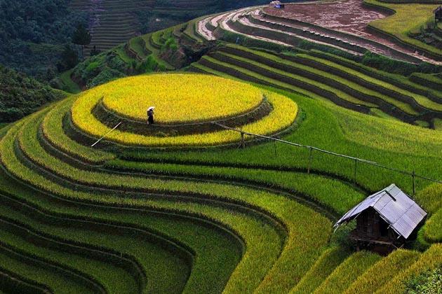 MÙ CANG CHẢI - VIET NAM by Tuan Nguy