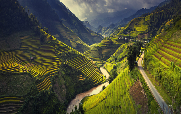 Rice terraces in Mu Cang Chai, North Vietnam by Thang Soi