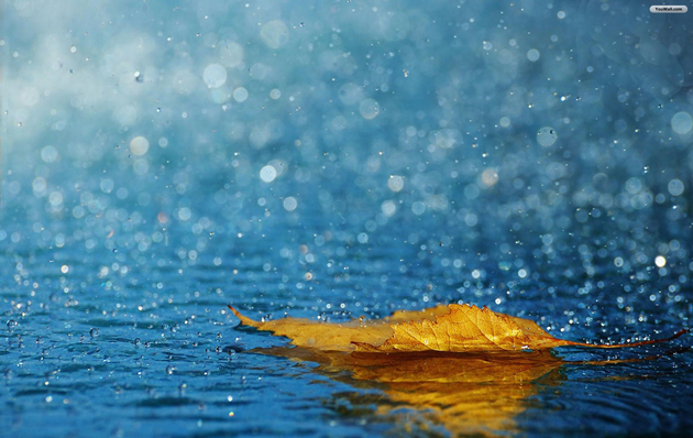 25 Fabulous Rain Wallpaper for your Desktop (2)