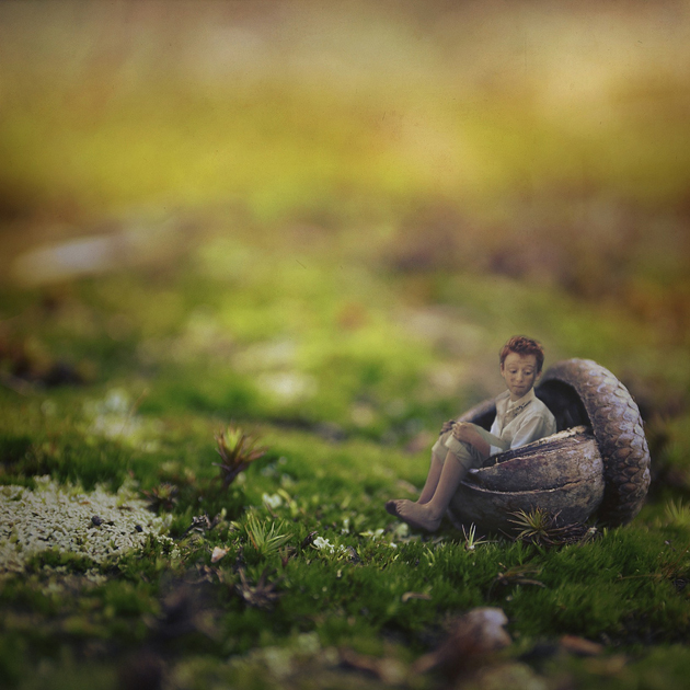30 Tiny miniature Photography by fiddle oak (10)