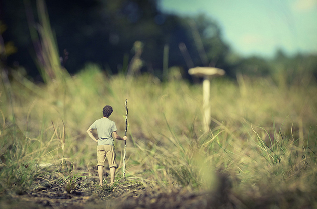 30 Tiny miniature Photography by fiddle oak (14)
