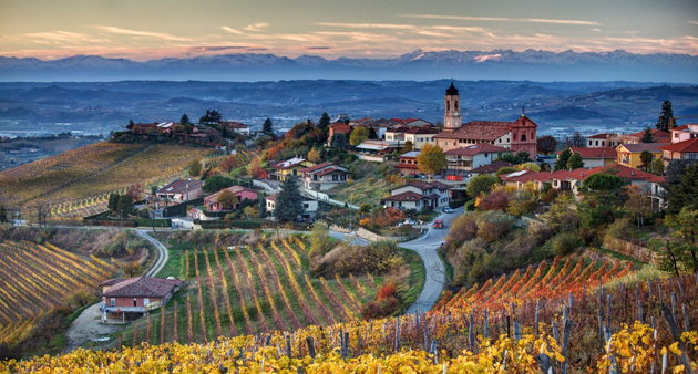 World___Italy_Italia_Italy_Piemonte_Treiso_landscapes