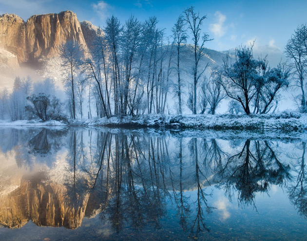Winter Reflections by Cindy Costa