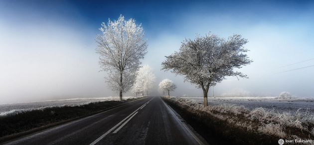 winter by Ioan Balasanu