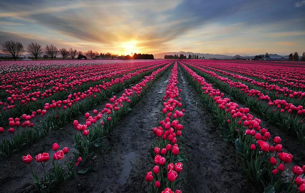 Beautiful Landscape Photography by Pete Piriya (17)