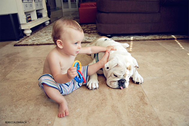 Beautiful Photos of a Little Girl and Her English Bulldog (1)