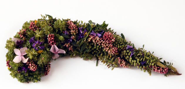 Creative Human Organs from Plants by Camila Carlow (1)