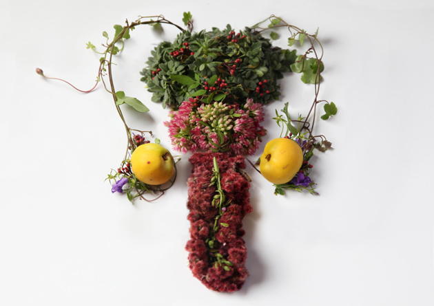 Creative Human Organs from Plants by Camila Carlow (7)