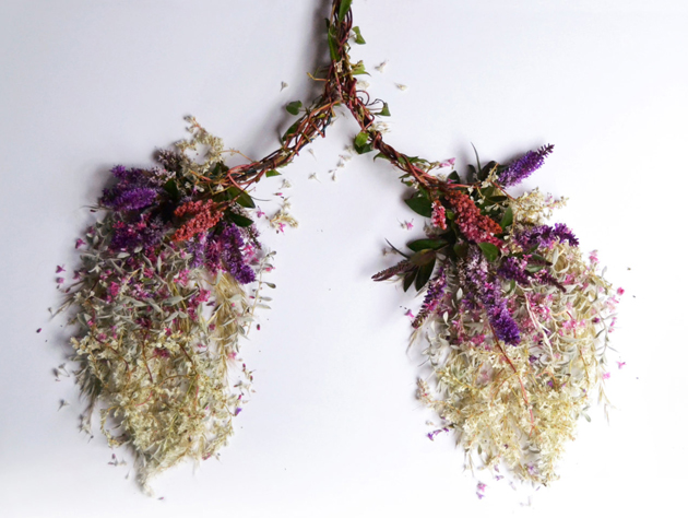 Creative Human Organs from Plants by Camila Carlow (9)