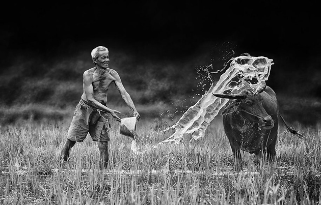 Day by Day life Of Village People in Indonesia by Herman Damar -Greatinspire (12)