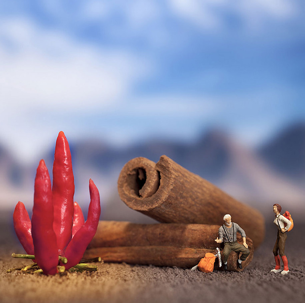 Tiny People's Big Adventures in a World of Food by William Kass-greatinspire (12)