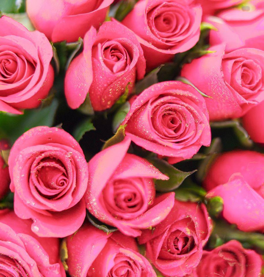 Romantic & Elegant flower bouquets (1)