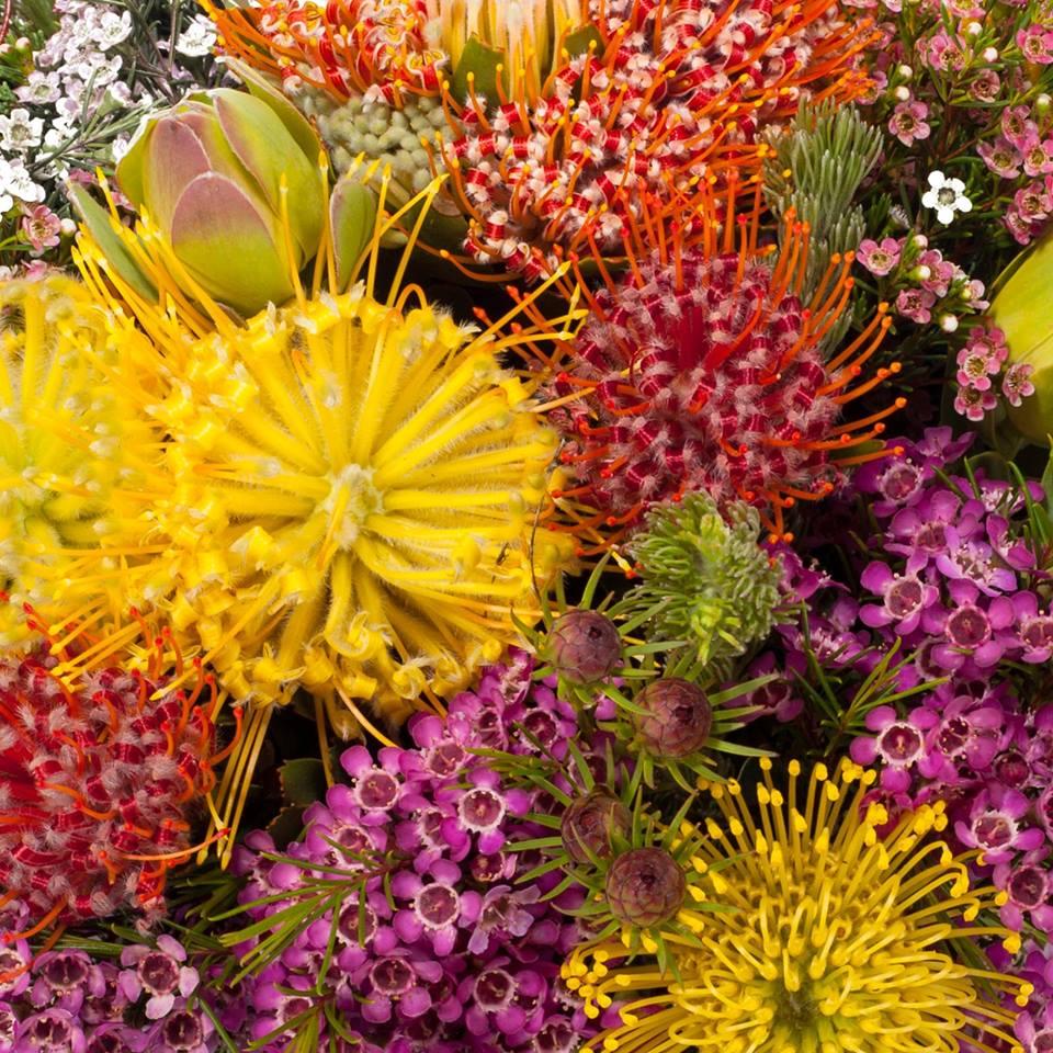 Romantic & Elegant flower bouquets (12)
