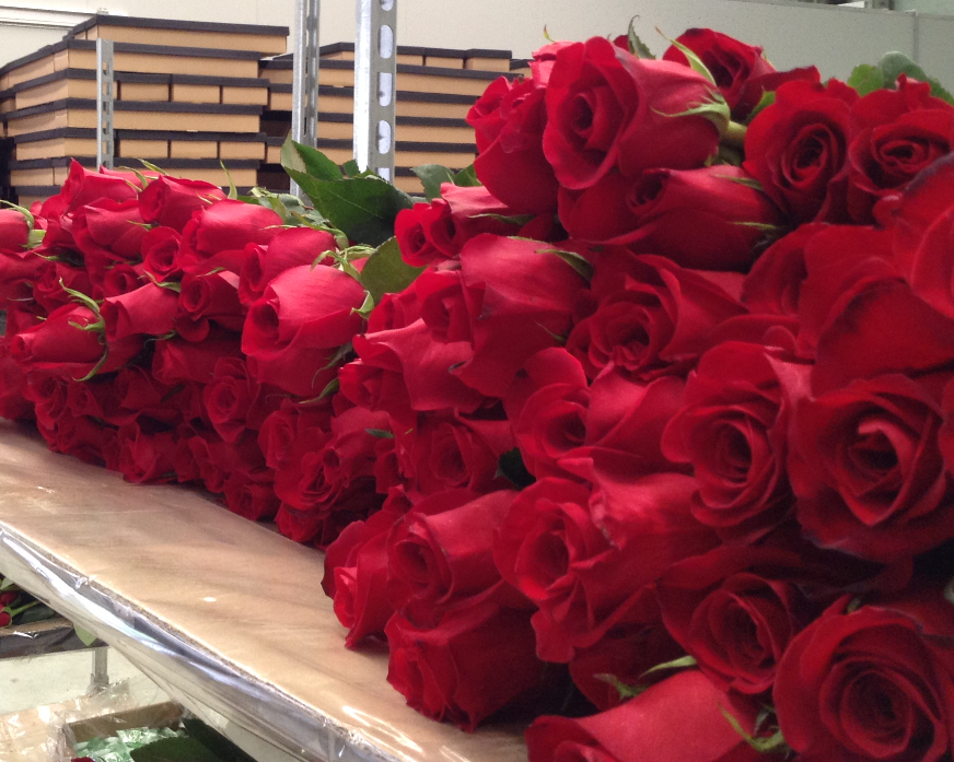 Romantic & Elegant flower bouquets (2)