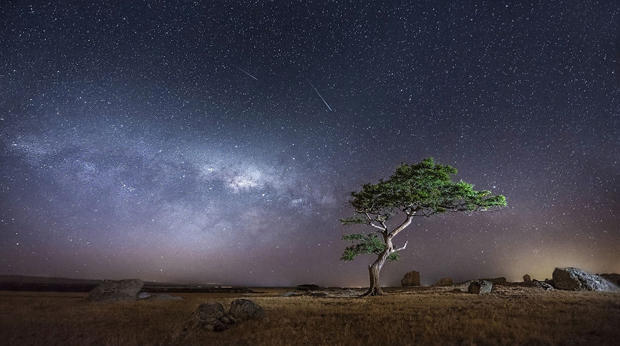 25 Glorious Starry Sky (3)