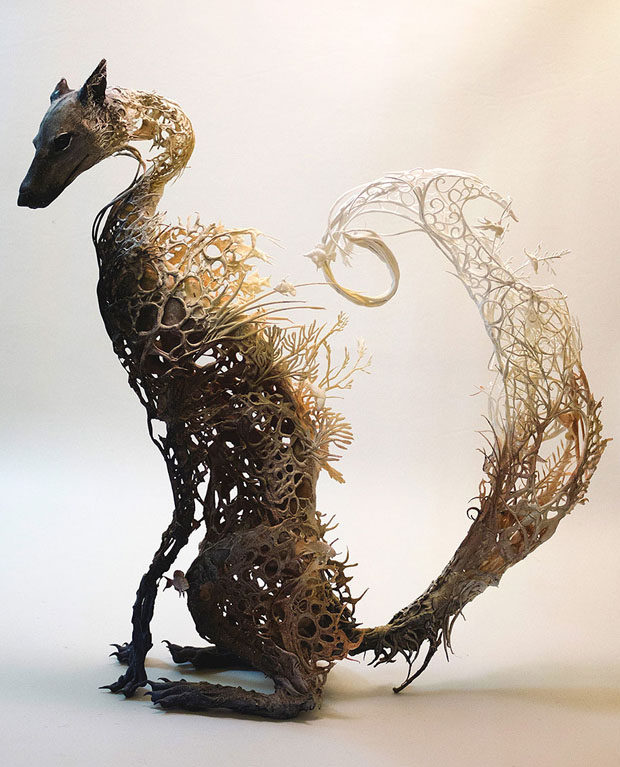 Fusion of flora and fauna by Ellen jewett (15)