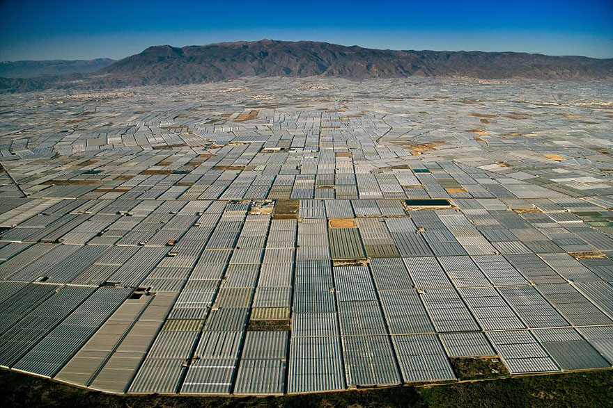 Landscape covered in greenhouses , Almeria (Spain)