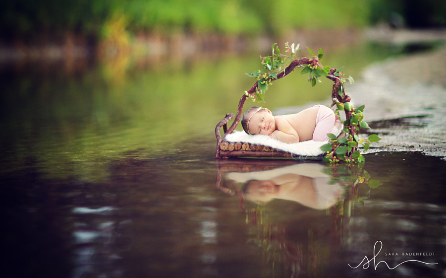 New Life by Sara Hadenfeldt on 500px